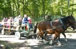 Hubertove jazdy